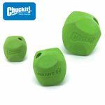 Chuckit! Erratic Ball - Apportierspielzeug Hundespielzeug Leckerliball Snackball